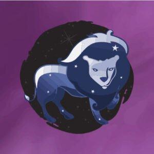 leo zodiac sign banner square